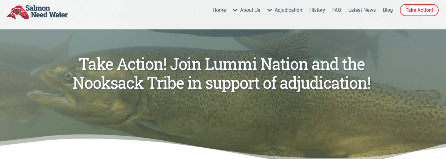 banner from the Salmon Need Water website